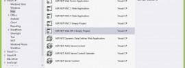 Web API 2 Project Template
